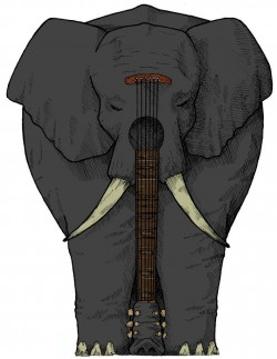 the black elephant band