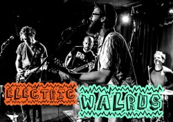 electric walrus